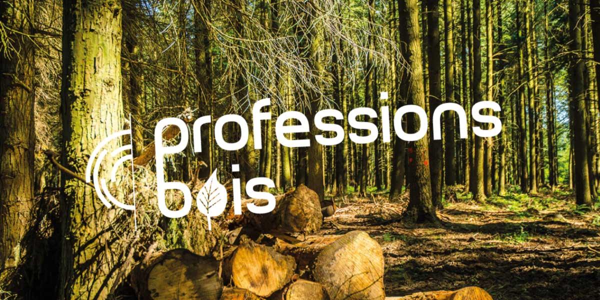 Anne-Lise-Mommert-PommeP-graphiste-webdesigner-caen-Professions-bois-logo-3.jpg
