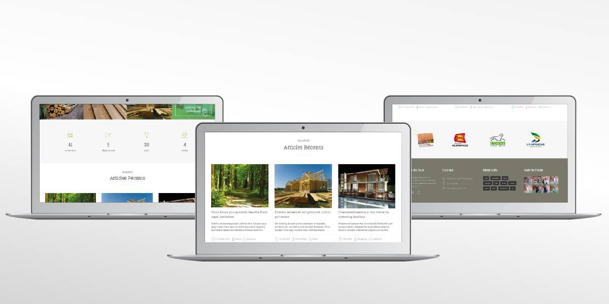 Anne-Lise-Mommert-PommeP-graphiste-webdesigner-caen-Professions-bois-site-mois-du-bois-2-50.jpg