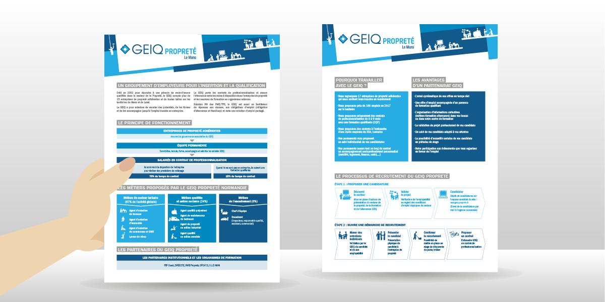 PommeP-graphiste-webdesigner-caen-geiq-proprete-le-mans-fiche-prescripeurs_02.png