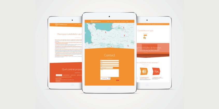 Anne-Lise-Mommert-PommeP-graphiste-webdesigner-caen-geiq-proprete-normandie-design_site-2