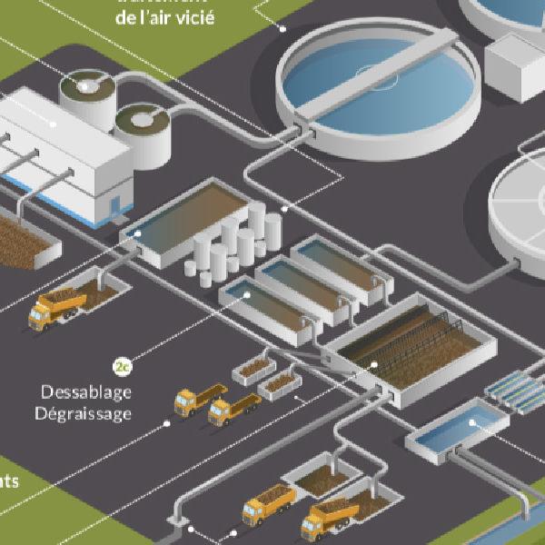 Illustration vectorielle et conception plaquette pour Caen la mer